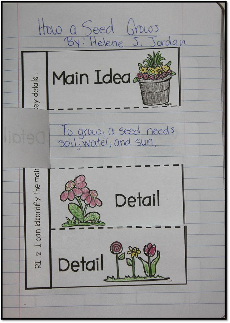 Main Idea & Details - Interactive Notebook