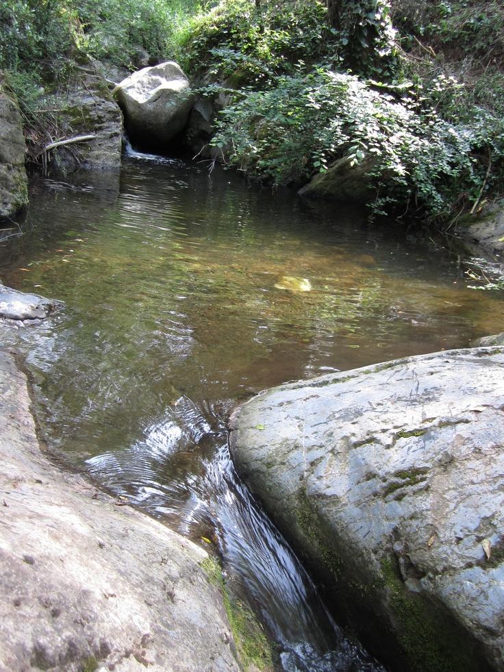 Riera de Vallcàrquera (Figaró)