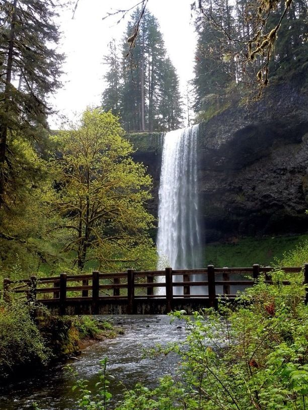 Escorts oregon marion county Oregon Escorts - Meet Escorts Near You!