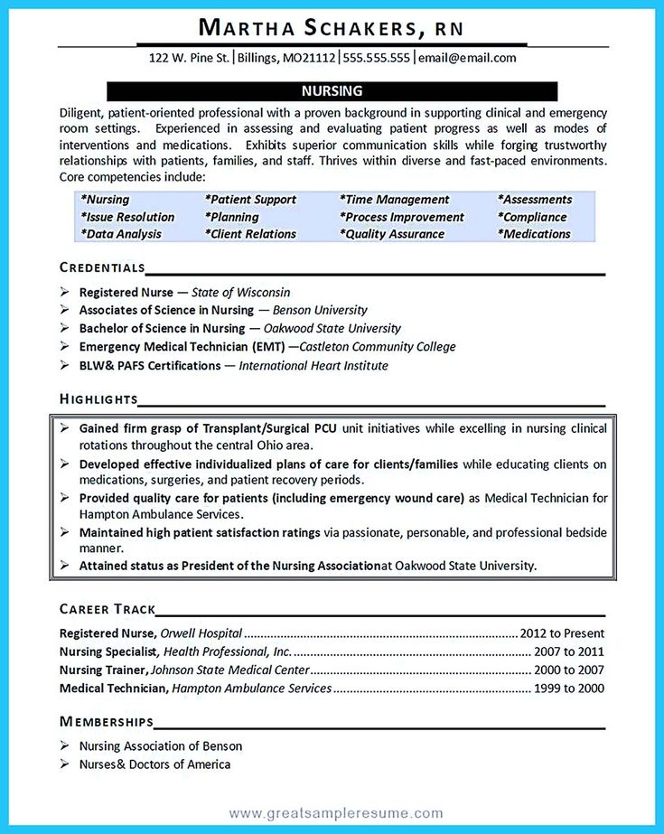 resume template critical care ebook 28 images