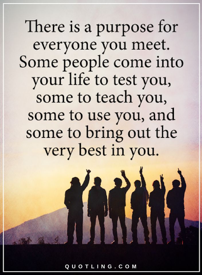 People Come Into Your Life Quotes : people, quotes, Quotes