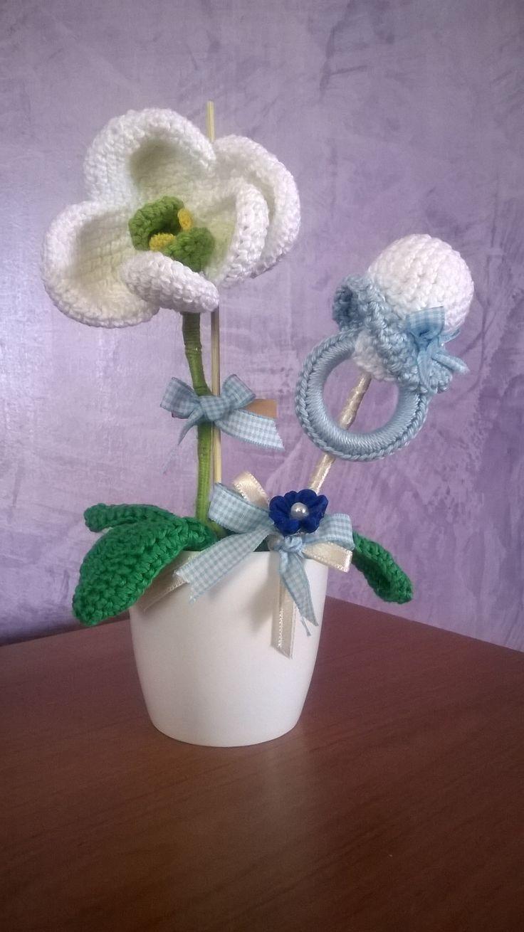 vasetto di orchidee con ciuccio per annunciare una nascita