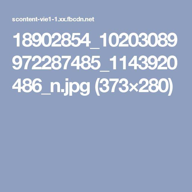 18902854_10203089972287485_1143920486_n.jpg (373×280)
