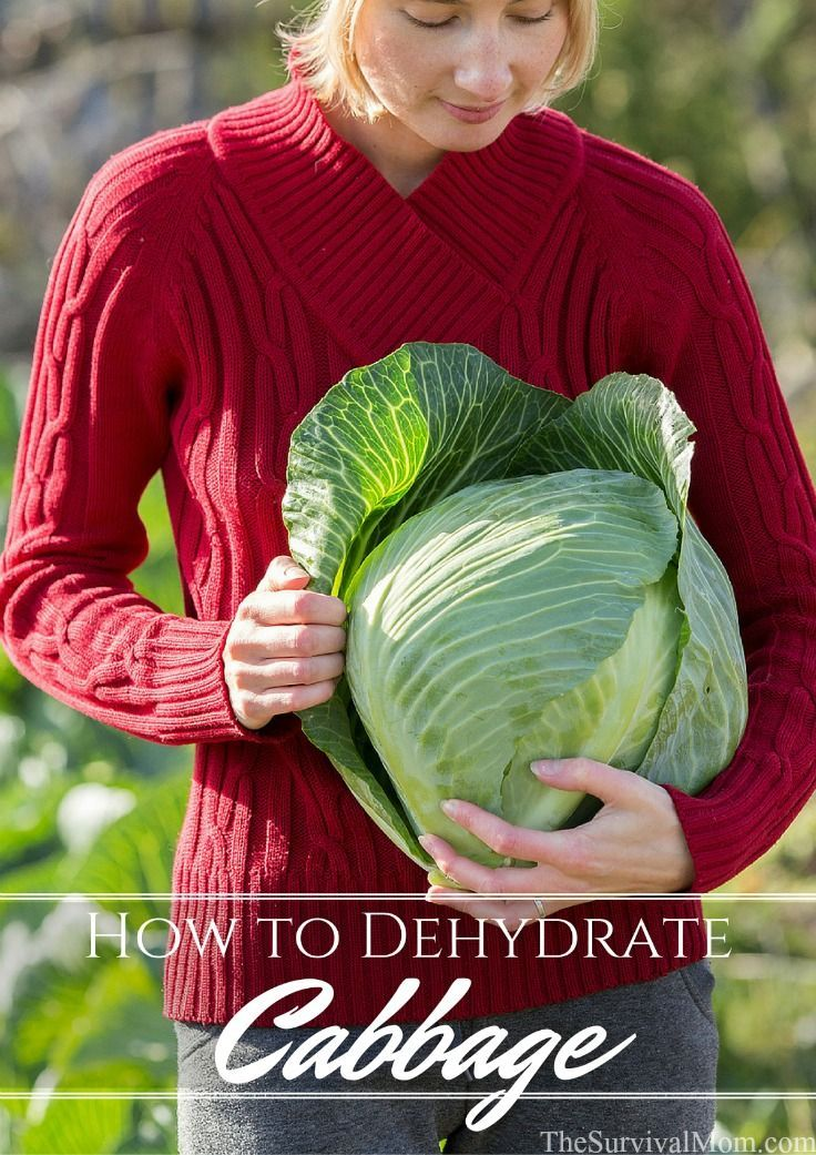 When you think of dehydrating vegetables of any kind, learning to dehydrate cabbage is probably not the first thing that comes to mind. But maybe it should!