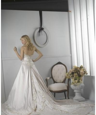 A Line Princess Strapless Cathedral Train  wedding dress for brides 2010 Style(WDS1176)