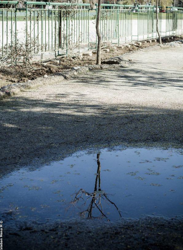 Reflejo / Reflection Park