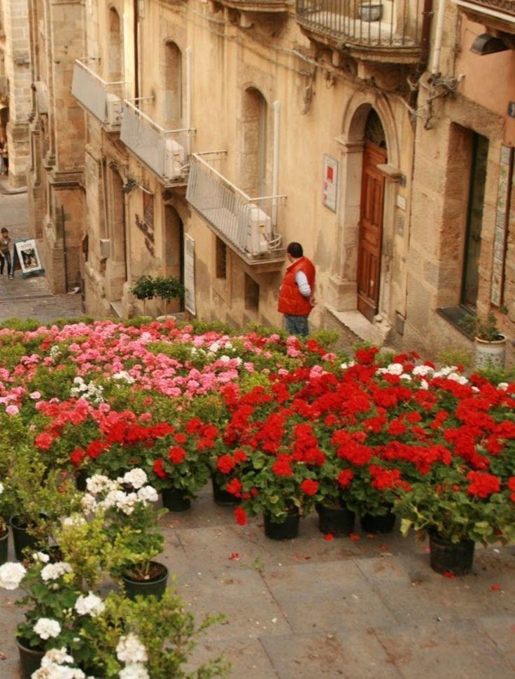 Caltagirone, province of Catania , Sicily Italy