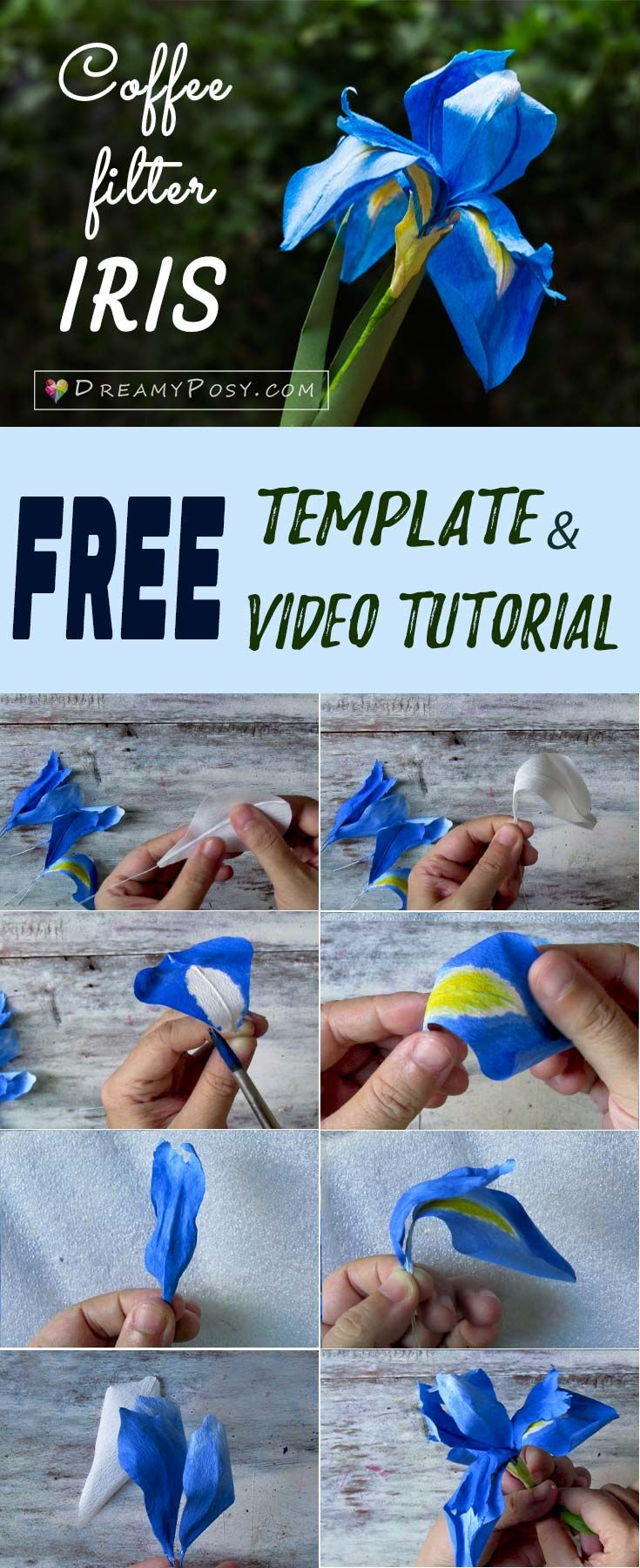How To Make Paper Iris Flower Free Template And Full Video Paper Flowers Paper Quilling Flowers Paper Roses