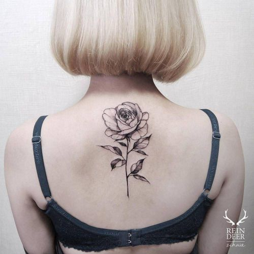 Blackwork/illustrative rose tattoo on the upper back. Tattoo...