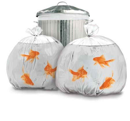 Pet Goldfish Bin Bags, These are so cute!!! Not practical for every day use but I'd find a reason to use them for something special!!! SO SO SO CUTE...WANT!