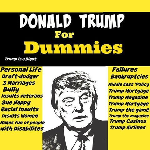 DUMMIES POLITICS AMERICAN FOR