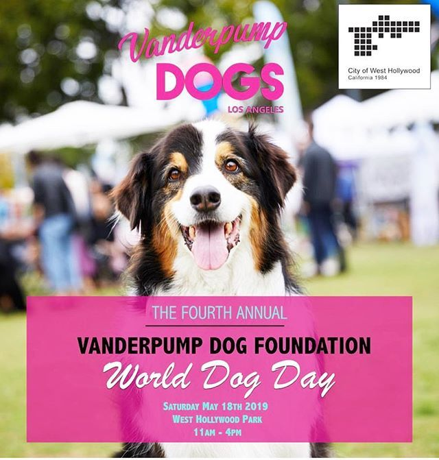 We Will Be At The 4th Annual World Dog Day Come Visit Us At The Event To Learn More About How We Help Pups And Their Paw Rents Urban Dog Dog Solution