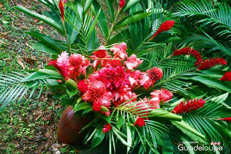 bouquet de fleurs tropicales domaine de severin sainte