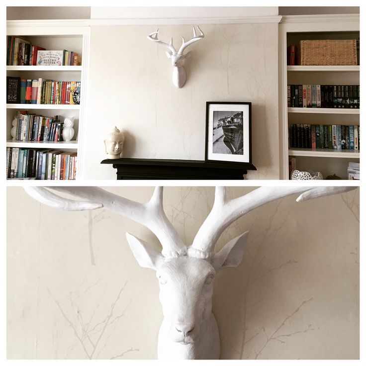 Mr Stag keeping charge in our TV room