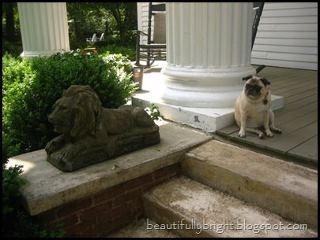 Sophie, on the porch at Madison Oaks Inn & Gardens  https://www.facebook.com/MadisonOaksInn