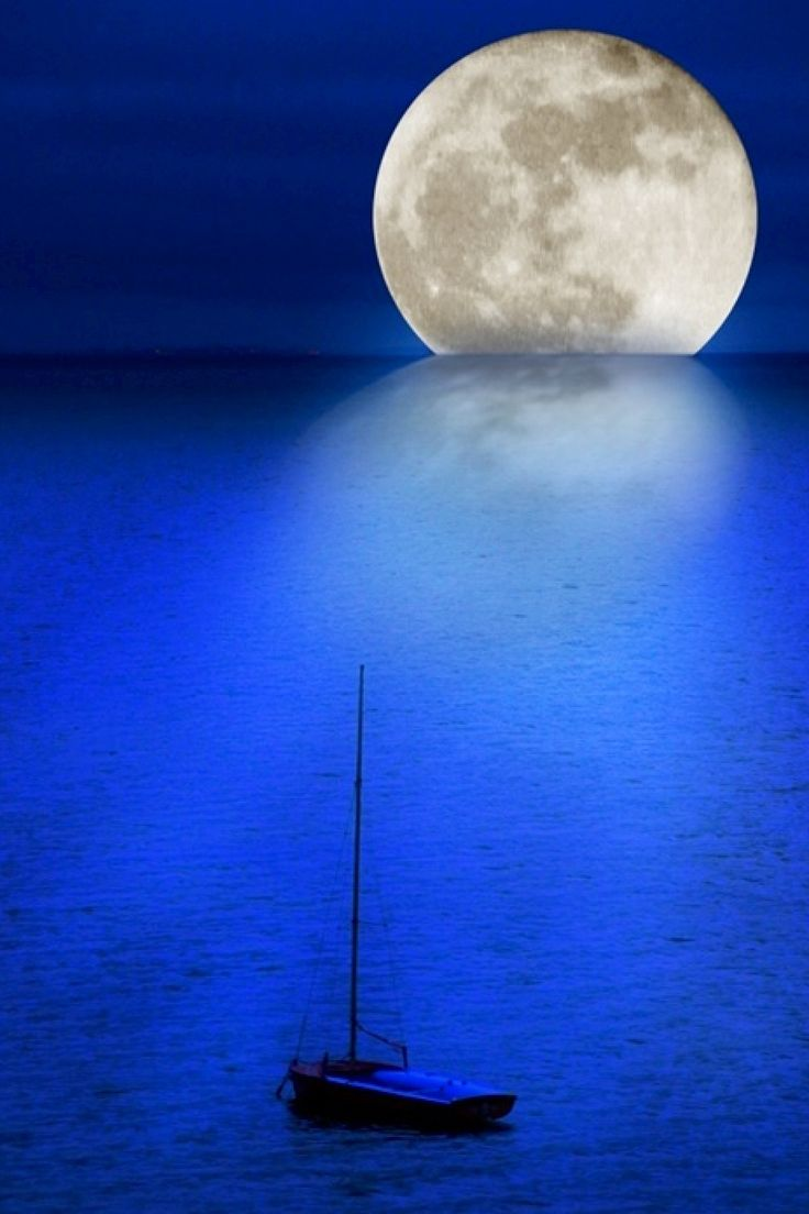 50 best wall murals wall paper images on pinterest for Blue moon mural