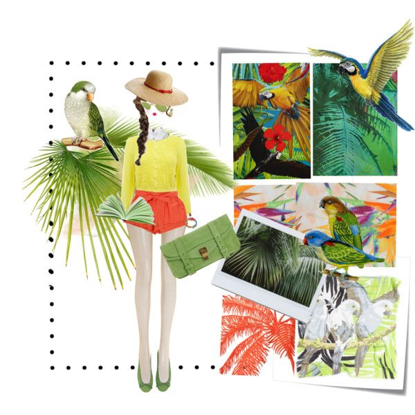 parrots by drusilla90 on Polyvore featuring moda, Altuzarra, Oasis, Kenzo, Matthew Williamson, Wolford, sass & bide, Proenza Schouler, Juicy Couture and Echo