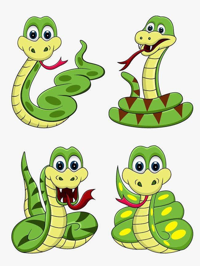 Millions Of Png Images Backgrounds And Vectors For Free Download Pngtree Snake Drawing Disney Face Painting Cartoon Clip Art