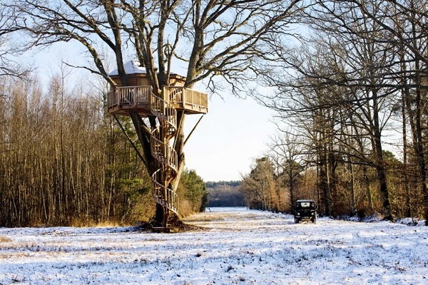 Tree house in the snow with fabulous spiral stairs