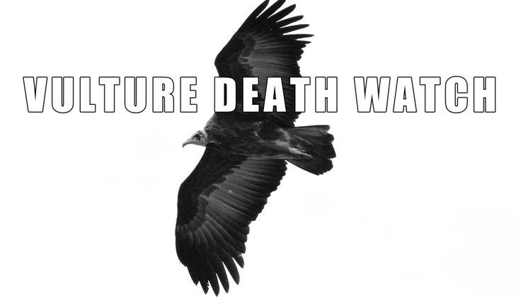 Wild Facts -- Vulture Death Watch