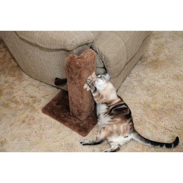 The 25 Best Couch Protector Ideas On Pinterest Pet Couch Cover Diy Furniture Protector And