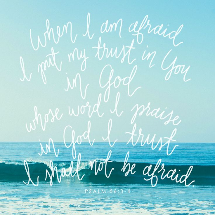 "Knots & Jots Lettering | ""When I am afraid, I put my trust in You. In God whose word I praise, in God I trust, I shall not be afraid."" Psalm 56:3-4"