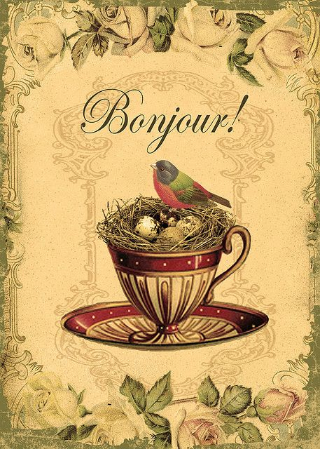 Bird in teacup nest with roses Bonjour!