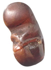 Amulet of amber from a woman's grave dated to the early Viking Age (800s AD). Found on the farm Line in Time municipality that area. The shape resembles a fetus at an early stage of development. Photo: Terje Tveit, AM UIs.  http://am.uis.no/category.php?categoryID=6588
