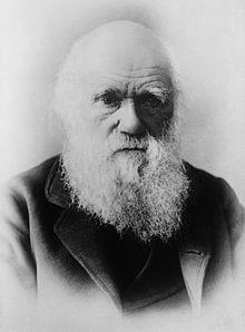 darwin - Buscar con Google