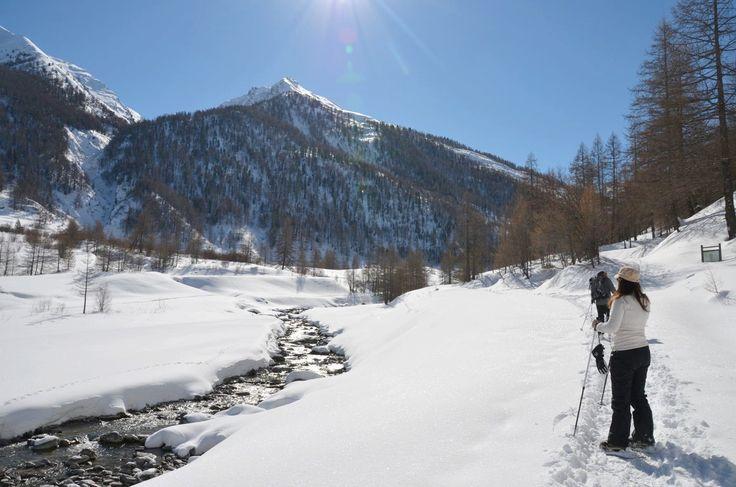 Châlet de rêve et séjour nature dans le Queyras, le secret bien gardé des Alpes du Sud en France. Bonnes adresses randonnée, ski, restaurants,...