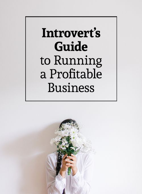 The Introvert's Guide to Running a Profitable Business - business tips for…