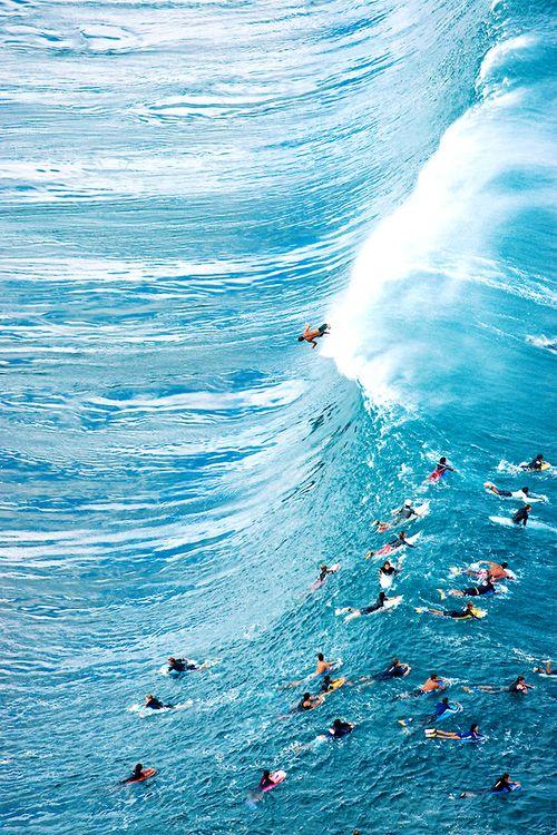 go surfing.