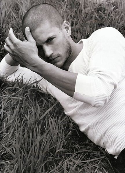 Wentworth Miller from that show prison break. Rumors are going around that he is gay. hope its not true!