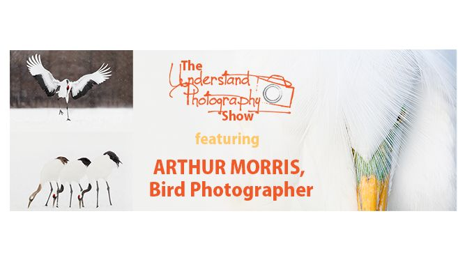 Bird Photography ft. Arthur Morris | The Understand Photography Show | Episode 1 Show Notes | LIVE every Friday at 4pm ET on Facebook.com/UnderstandPhotography | www.UnderstandPhotography.com