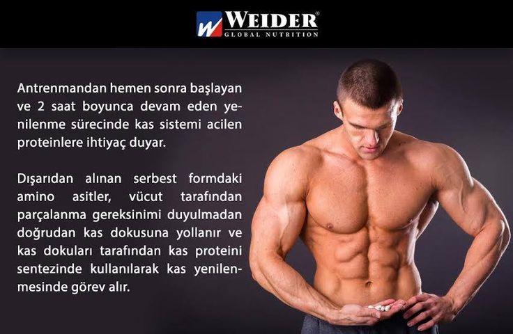 Kas sistemi amino asitlere ihtiyaç duyar... Peki ama neden?#weider #weiderturk #fitness #bodybuilding #health #life #fit #yaşam #sağlık #spor #aminoasit