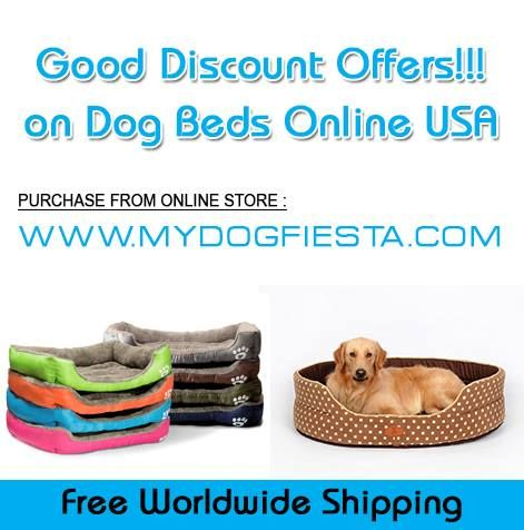 If you looking for the most finest and top matured option that has online service for pets then go and #Buy_Dog_Beds_Online_USA.  It can be your satisfaction.