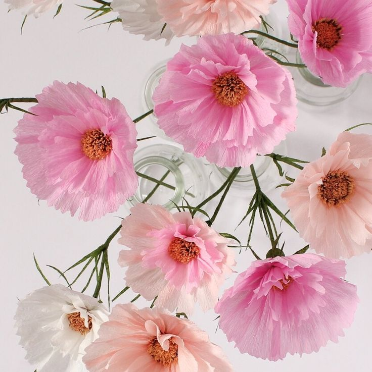 Cosmos Cupcake Blush paper flowers by @apetalunfolds