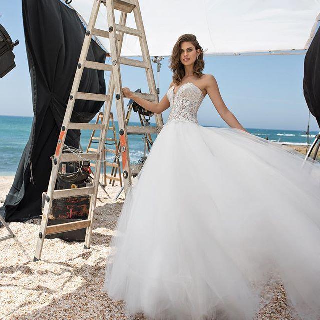 Pnina Tornai Wedding Dresses 2019: 18 Best LOVE By Pnina Tornai 2018 Images On Pinterest