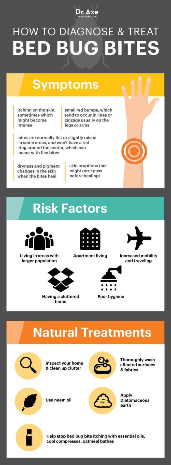 Bed Bug Bites Symptoms, Facts & Natural Treatments Bed