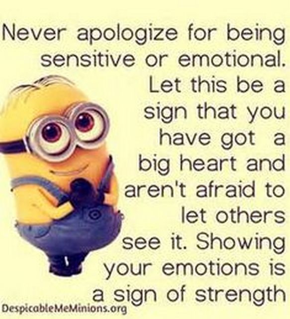 Funny Minions From Seattle (12:27:22 PM, Saturday 20, August 2016 PDT)   30  Pics
