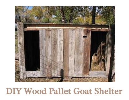 Diy Wood Pallet Goat Shelter Self Sufficiency