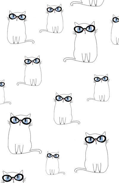 Chat à lunettes.
