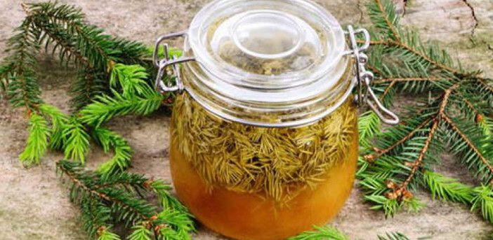 Siropul de muguri de brad este folosit in tratarea a numeroase afectiuni, fiind un leac stravechi din medicina populara romaneasca.