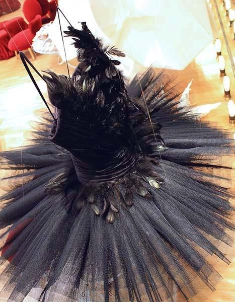 Tutu noir repetto - Vitrine Lac des Cygnes et origami Danse classique