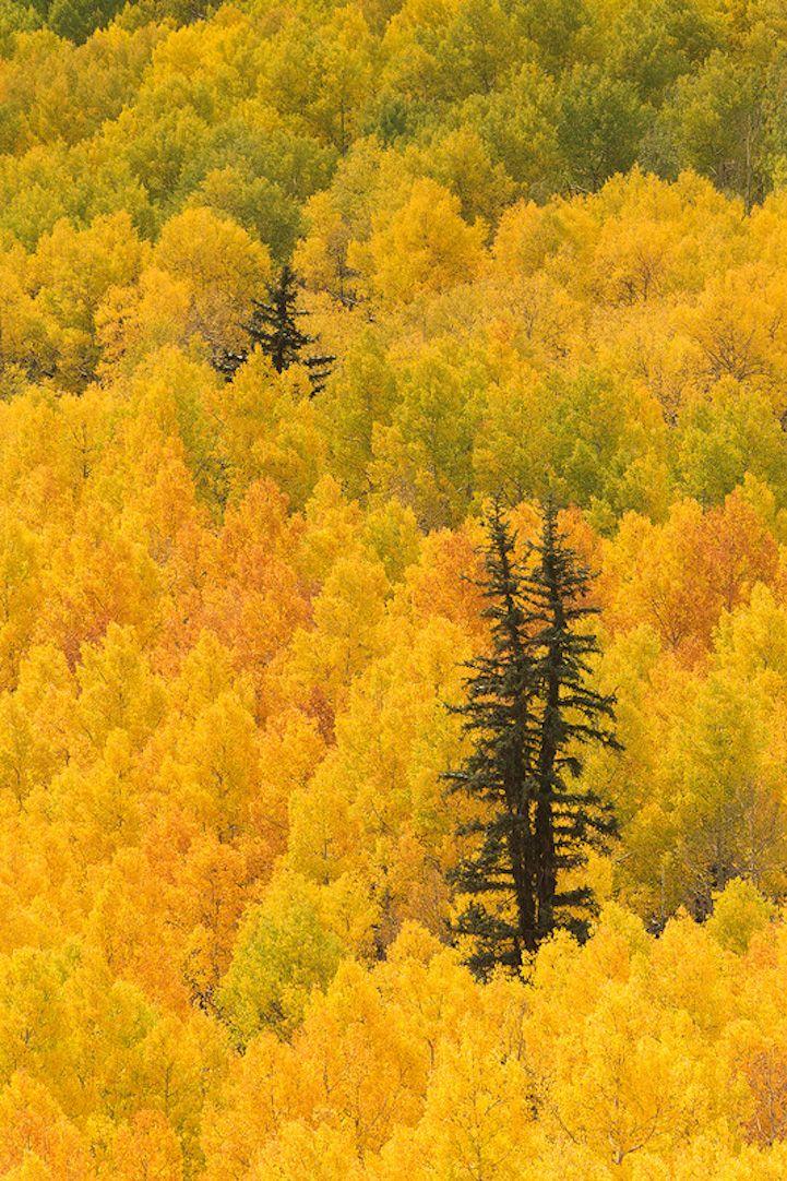 44 paysages colorés qui mettent en évidence la beauté naturelle incroyable de la Terre - page 3