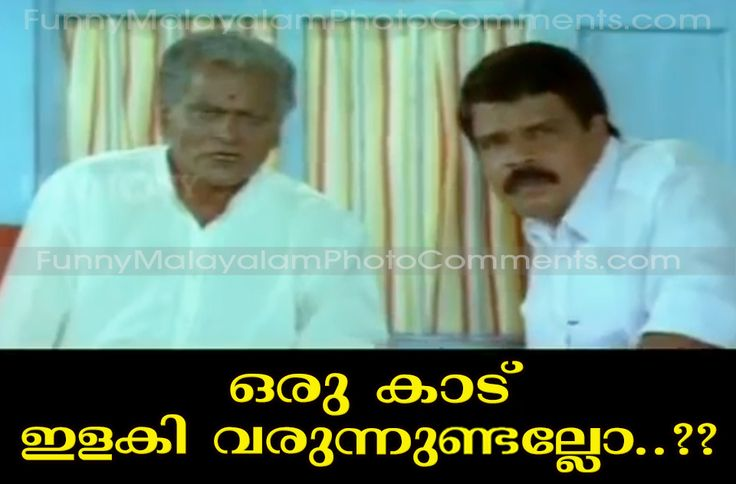 1000+ images about Malayalam Comedy photo comments on ...