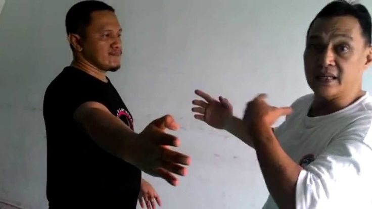 Pencak Silat: Overpowering your opponent's knifehand attack