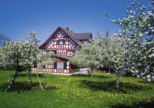 Apple, Cherry and Pear-Trees having their annual costume party. Come and have a look!  www.thurgau-tourismus.ch