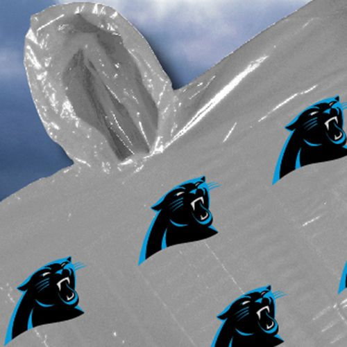 23 best Perfect NFL Carolina Panthers Gifts images on Pinterest ...