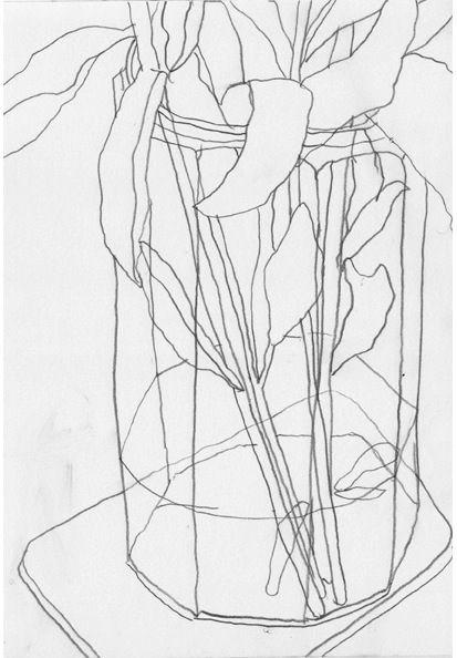 Drawing Lines Ks : Best contour line drawings images on pinterest